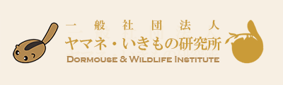 Dormouse & Wildlife Institute