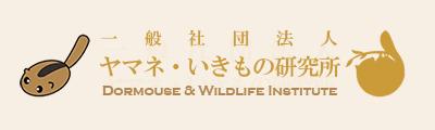 ヤマネ・いきもの研究所|Dormouse & Wildlife Institute